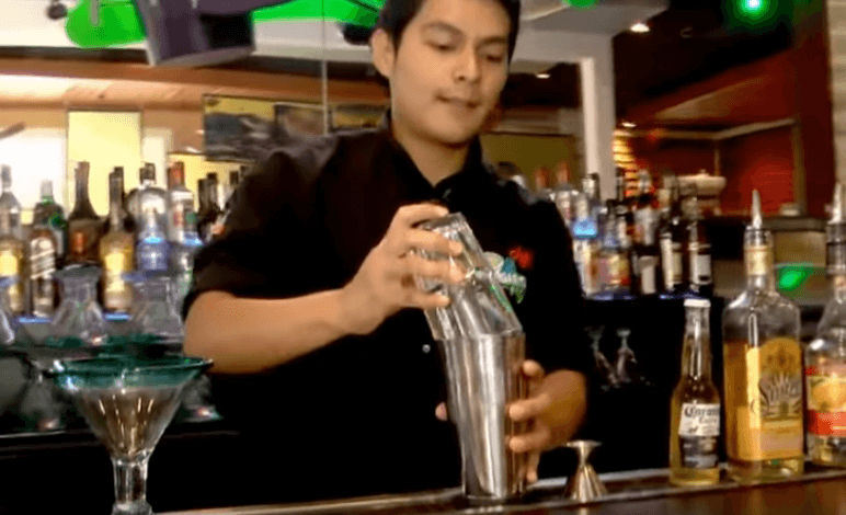 Master Your Shakers From Enthusiast to Expert Cocktail Bartender